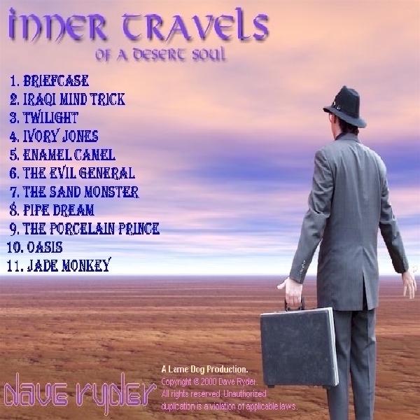 The Traveller surveys the vastness of the desert...